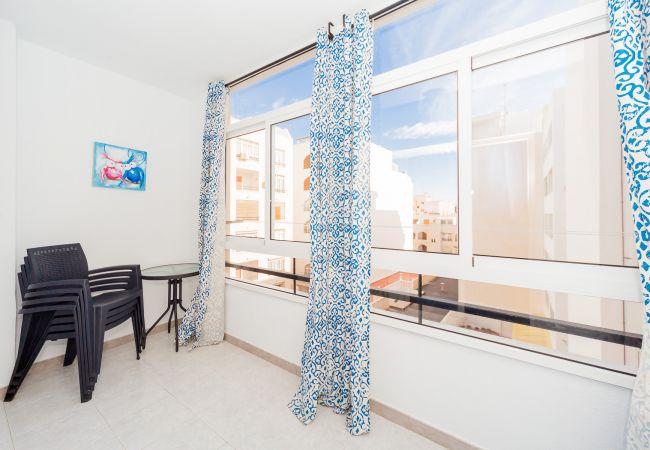 Ferienwohnung ID101 (2351049), Torrevieja, Costa Blanca, Valencia, Spanien, Bild 9