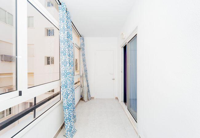 Ferienwohnung ID101 (2351049), Torrevieja, Costa Blanca, Valencia, Spanien, Bild 10