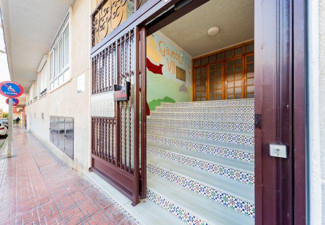 Ferienwohnung ID101 (2351049), Torrevieja, Costa Blanca, Valencia, Spanien, Bild 11