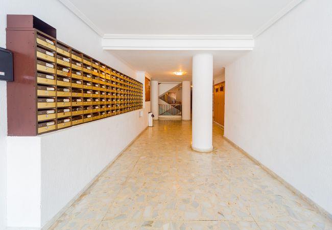 Ferienwohnung ID101 (2351049), Torrevieja, Costa Blanca, Valencia, Spanien, Bild 14