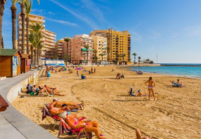 Ferienwohnung ID101 (2351049), Torrevieja, Costa Blanca, Valencia, Spanien, Bild 23