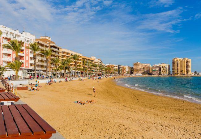 Ferienwohnung ID101 (2351049), Torrevieja, Costa Blanca, Valencia, Spanien, Bild 22