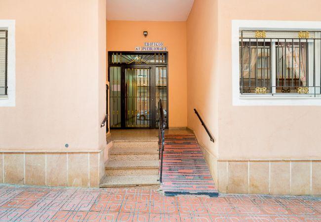 Ferienwohnung ID3 (2351048), Torrevieja, Costa Blanca, Valencia, Spanien, Bild 13