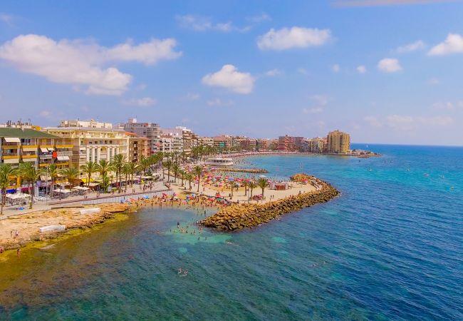 Ferienwohnung ID104 (2351051), Torrevieja, Costa Blanca, Valencia, Spanien, Bild 24