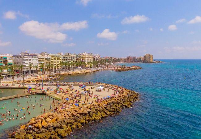 Ferienwohnung ID104 (2351051), Torrevieja, Costa Blanca, Valencia, Spanien, Bild 23