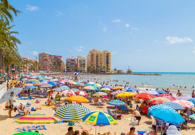 Ferienwohnung ID26 (2351056), Torrevieja, Costa Blanca, Valencia, Spanien, Bild 24