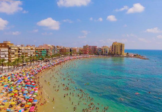 Ferienwohnung ID18 (2351054), Torrevieja, Costa Blanca, Valencia, Spanien, Bild 18