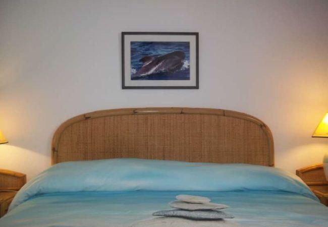 Ferienhaus Villa in El Golfo - 105677 (2322921), El Golfo, Lanzarote, Kanarische Inseln, Spanien, Bild 4