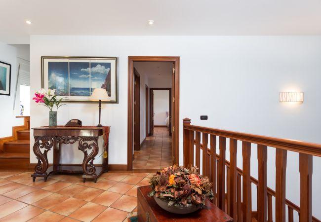 Ferienhaus Casa Tea (2322931), Tegueste, Teneriffa, Kanarische Inseln, Spanien, Bild 23