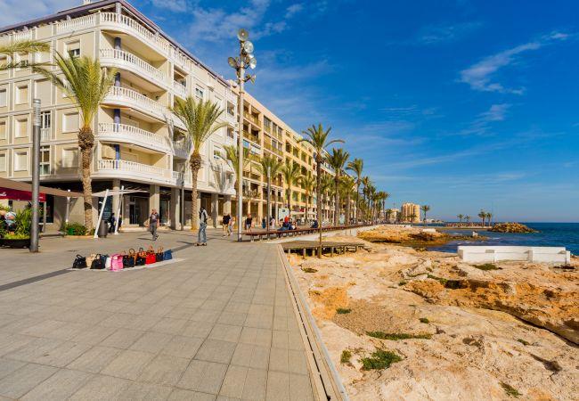 Ferienwohnung ID2 (2351035), Torrevieja, Costa Blanca, Valencia, Spanien, Bild 23