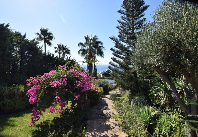 La Fortuna - Jardín