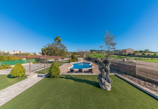 Maison de vacances Villa Sa Sinia (2360953), Lloret de Vistalegre, Majorque, Iles Baléares, Espagne, image 2