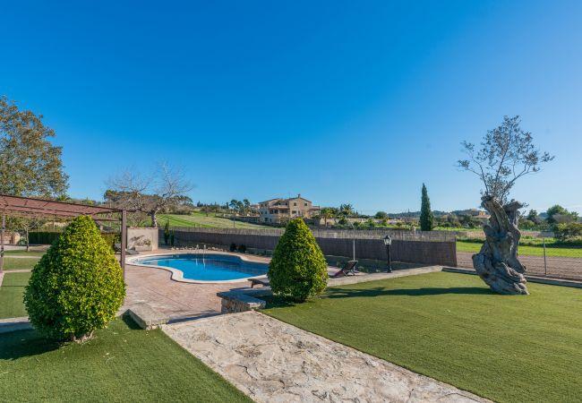 Maison de vacances Villa Sa Sinia (2360953), Lloret de Vistalegre, Majorque, Iles Baléares, Espagne, image 24