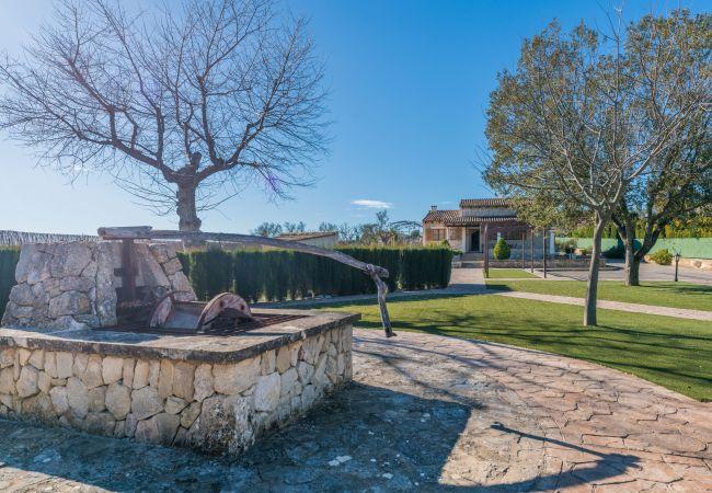 Maison de vacances Villa Sa Sinia (2360953), Lloret de Vistalegre, Majorque, Iles Baléares, Espagne, image 28