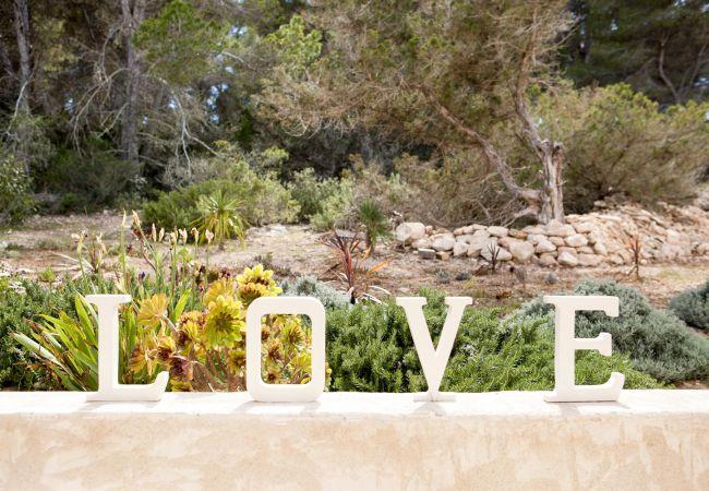 Maison de vacances CASA FORMENTERA (2376718), Sant Francesc de Formentera, Formentera, Iles Baléares, Espagne, image 21