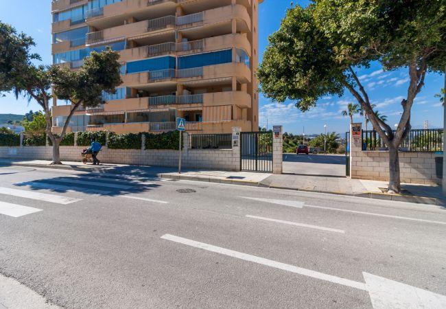 Ferienwohnung Apartment Miramar Fuengirola Canovas (VC) (2385360), Fuengirola, Costa del Sol, Andalusien, Spanien, Bild 23