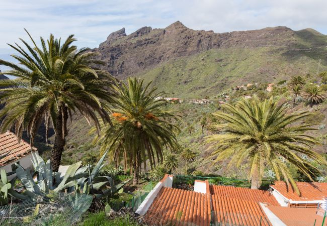 Maison de vacances Masca with garden and free WIFI (2408899), El Palmar, Ténérife, Iles Canaries, Espagne, image 22