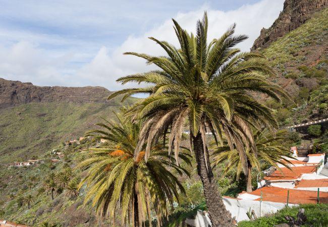 Maison de vacances Masca with garden and free WIFI (2408899), El Palmar, Ténérife, Iles Canaries, Espagne, image 23