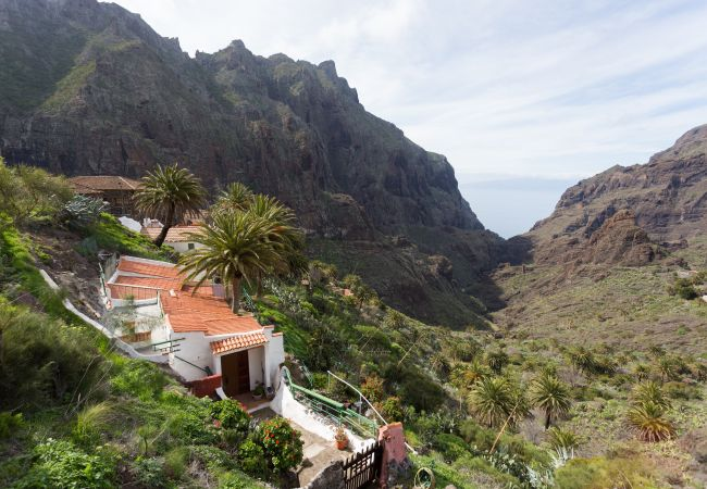 Maison de vacances Masca with garden and free WIFI (2408899), El Palmar, Ténérife, Iles Canaries, Espagne, image 24
