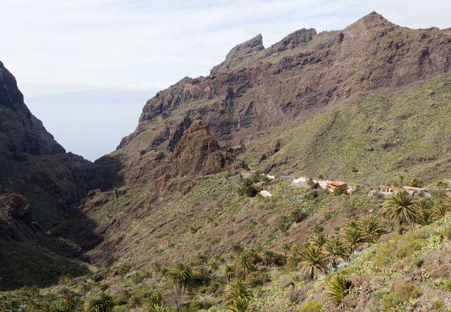 Maison de vacances Masca with garden and free WIFI (2408899), El Palmar, Ténérife, Iles Canaries, Espagne, image 25
