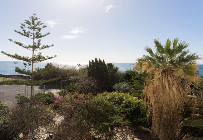Appartement de vacances Las Gaviotas Beach I (2389373), Benijo, Ténérife, Iles Canaries, Espagne, image 22