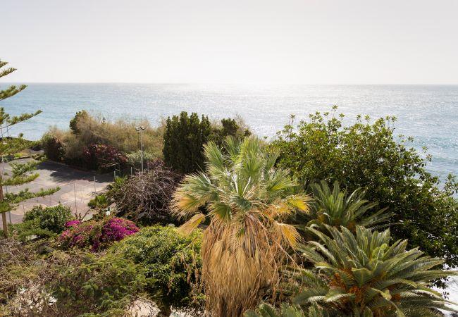 Appartement de vacances Las Gaviotas Beach II (2389374), Benijo, Ténérife, Iles Canaries, Espagne, image 3