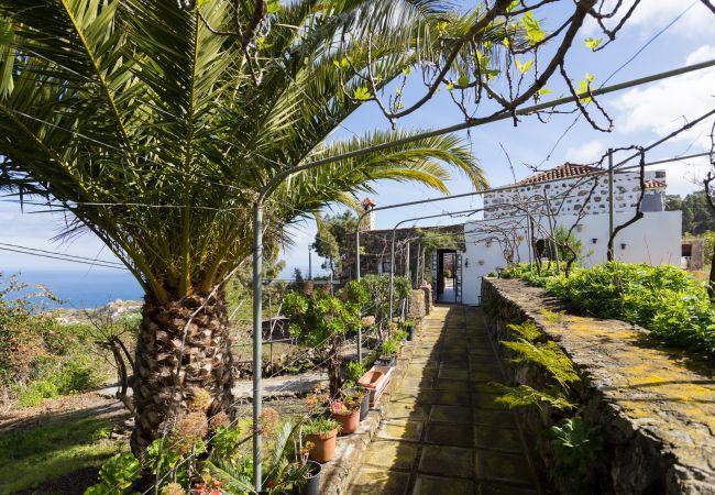 Maison de vacances Finca Villa Rosalía (2397715), Santa Barbara (ES), Ténérife, Iles Canaries, Espagne, image 5