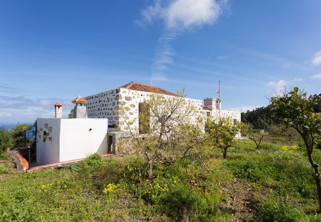 Maison de vacances Finca Villa Rosalía (2397715), Santa Barbara (ES), Ténérife, Iles Canaries, Espagne, image 24
