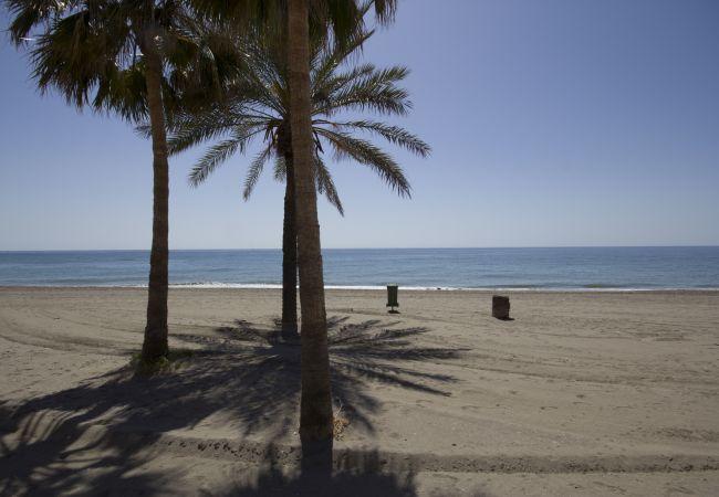 Ferienwohnung Beach Apartment Mediterráneo Torrox Canovas CN (2411687), Torrox, Costa del Sol, Andalusien, Spanien, Bild 13