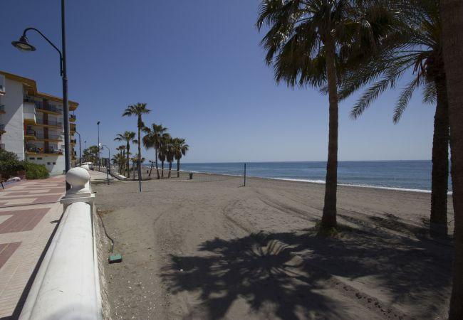 Ferienwohnung Beach Apartment Mediterráneo Torrox Canovas CN (2411687), Torrox, Costa del Sol, Andalusien, Spanien, Bild 14