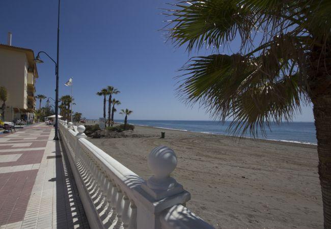 Ferienwohnung Beach Apartment Mediterráneo Torrox Canovas CN (2411687), Torrox, Costa del Sol, Andalusien, Spanien, Bild 15