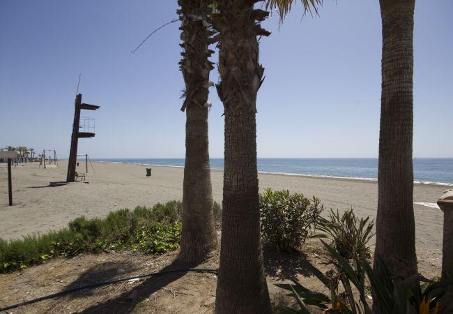Ferienwohnung Beach Apartment Mediterráneo Torrox Canovas CN (2411687), Torrox, Costa del Sol, Andalusien, Spanien, Bild 21