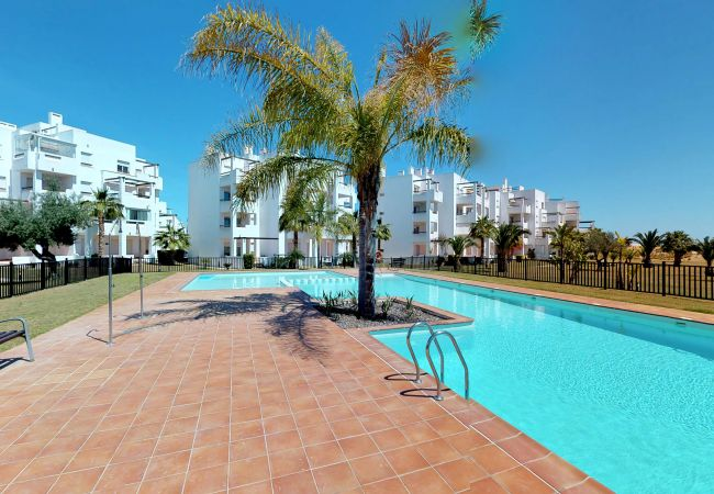 Appartement de vacances Casa Arancha - A Murcia Holiday Rentals Property (2491984), Roldan, , Murcie, Espagne, image 3
