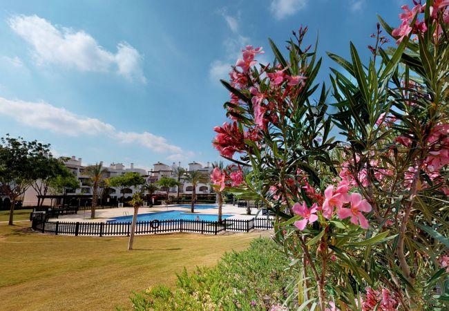 Appartement de vacances Casa Bonito - A Murcia Holiday Rentals Property (2491987), Roldan, , Murcie, Espagne, image 18
