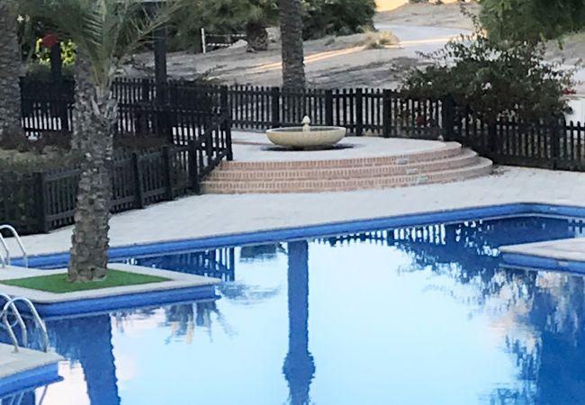 Appartement de vacances Casa Calida - A Murcia Holiday Rentals Property (2491979), Roldan, , Murcie, Espagne, image 4