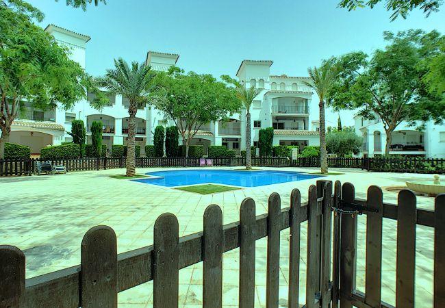 Appartement de vacances Blick auf den Pool, gratis WiFi, Erdgeschoss, Sat-TV (2464750), Roldan, , Murcie, Espagne, image 9