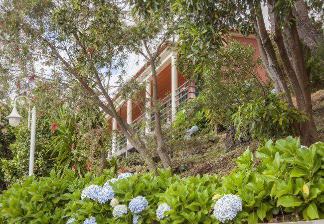Ferienhaus QUINTA DO SANTO - by MHM - A Paradise in the Count (2045331), Santa Cruz, , Madeira, Portugal, Bild 9