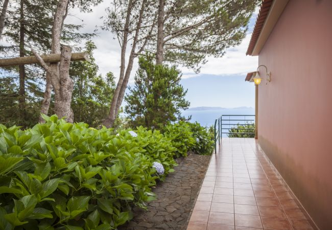 Ferienhaus QUINTA DO SANTO - by MHM - A Paradise in the Count (2045331), Santa Cruz, , Madeira, Portugal, Bild 11