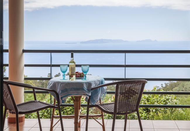 Ferienhaus QUINTA DO SANTO - by MHM - A Paradise in the Count (2045331), Santa Cruz, , Madeira, Portugal, Bild 14