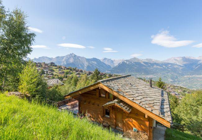Maison de vacances Chalet Chocolat 4 Vallées Nendaz (2618859), Haute-Nendaz, 4 Vallées, Valais, Suisse, image 33