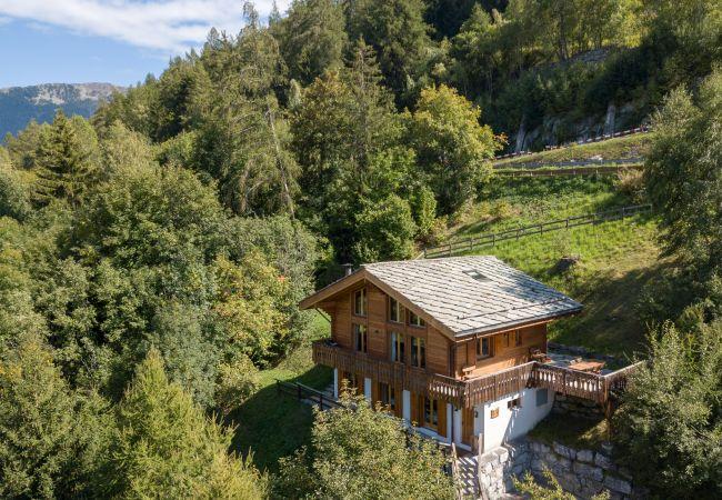 Maison de vacances Chalet Chocolat 4 Vallées Nendaz (2618859), Haute-Nendaz, 4 Vallées, Valais, Suisse, image 31