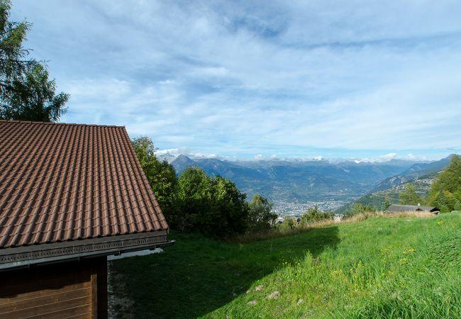 Maison de vacances Chalet Pierre Blanche - Ski-in/out (2618861), Haute-Nendaz, 4 Vallées, Valais, Suisse, image 34