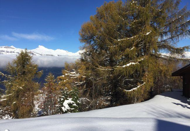 Maison de vacances Chalet Pierre Blanche - Ski-in/out (2618861), Haute-Nendaz, 4 Vallées, Valais, Suisse, image 33