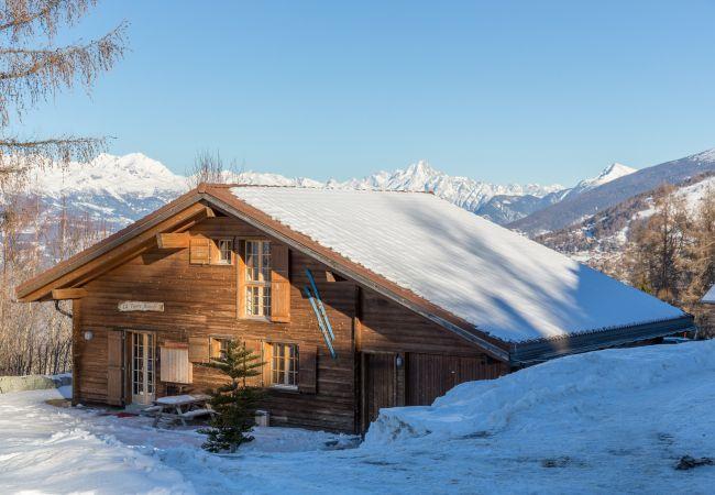 Maison de vacances Chalet Pierre Blanche - Ski-in/out (2618861), Haute-Nendaz, 4 Vallées, Valais, Suisse, image 29