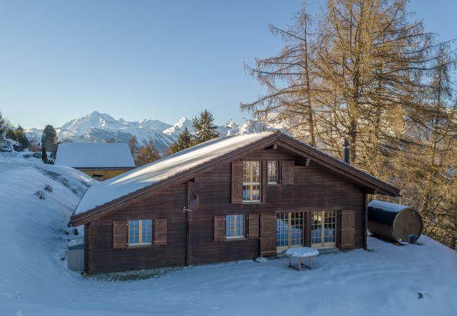 Maison de vacances Chalet Pierre Blanche - Ski-in/out (2618861), Haute-Nendaz, 4 Vallées, Valais, Suisse, image 31