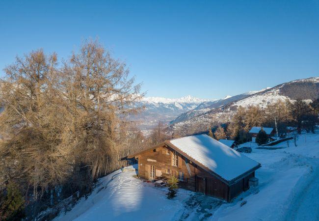 Maison de vacances Chalet Pierre Blanche - Ski-in/out (2618861), Haute-Nendaz, 4 Vallées, Valais, Suisse, image 32