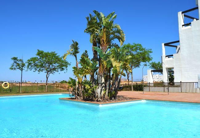 Appartement de vacances 1. Stock, gratis WiFi, Sat-TV, Pool, Balkon (2488975), Roldan, , Murcie, Espagne, image 17