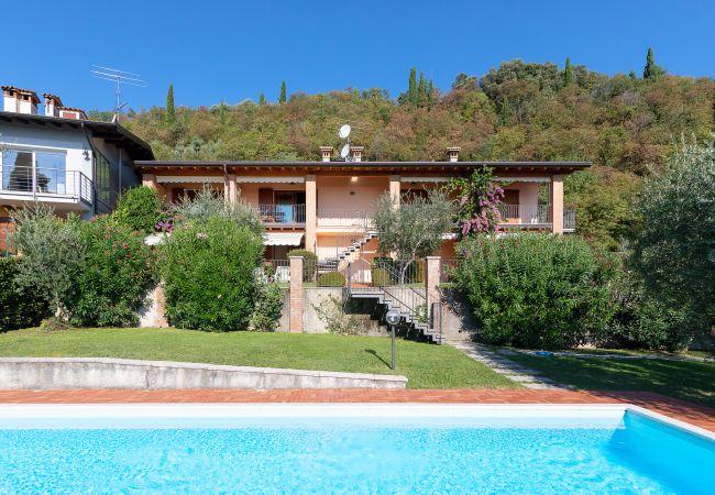 Le Olive 8/4   Gardasee - Lago di Garda