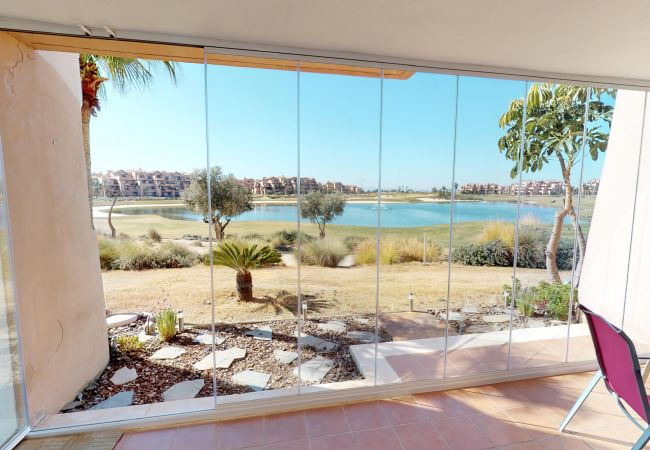 Ginkgo 278656 A Murcia Holiday Rentals Property