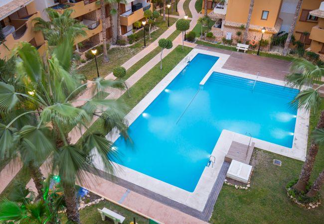 Appartement de vacances Fidalsa Home Beach Holidays (2599641), Torrevieja, Costa Blanca, Valence, Espagne, image 7
